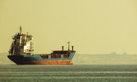 Protecting shipowners in the long run: A case for stringent scrubber wash water monitoring