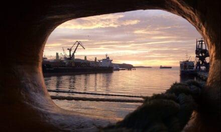 Maritime Week ook op afstand populair